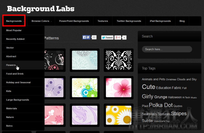 backgroundlabs_2